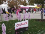 E-Z Movers and Susan G. Komen: